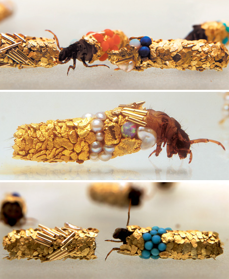 caddisfly-jewelry-2