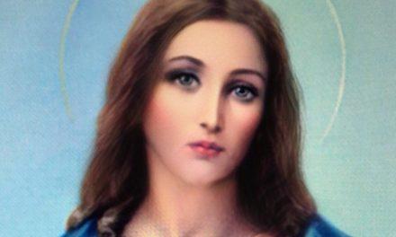 Kristur kynjavera