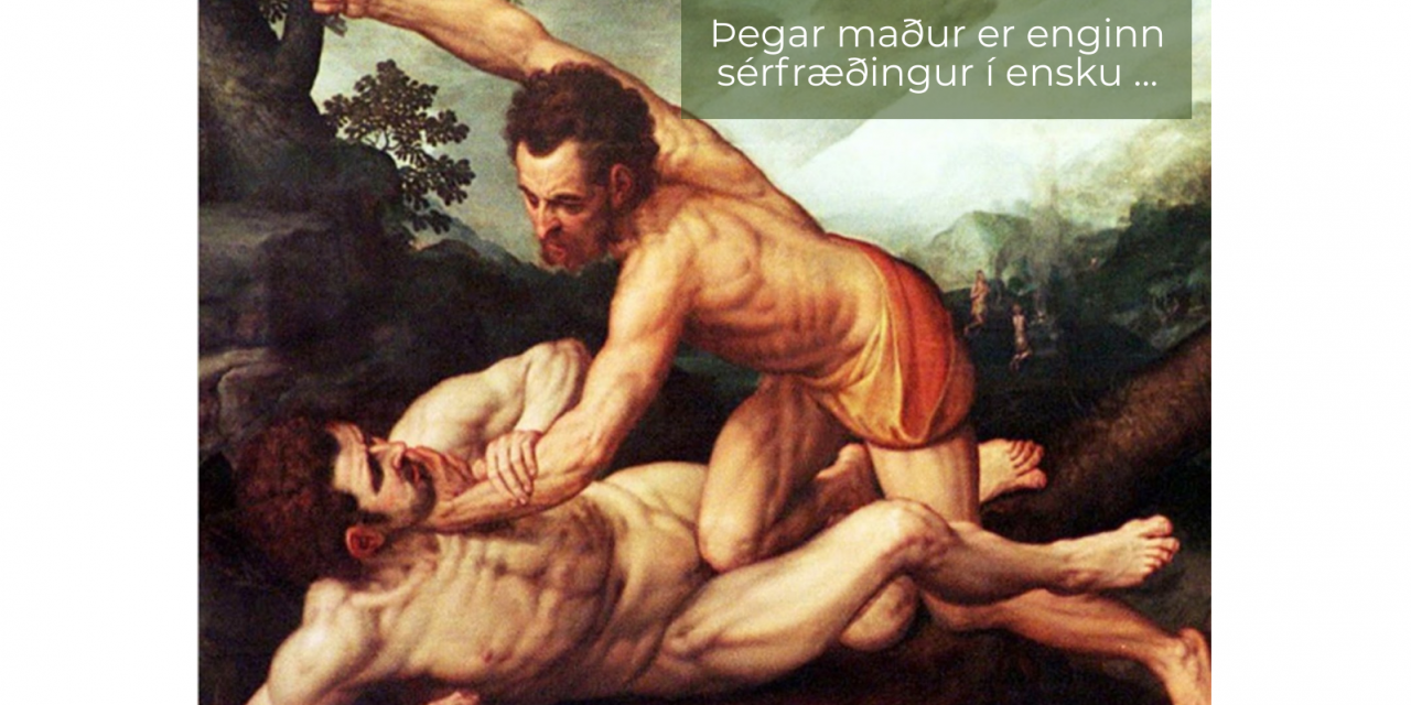 Þegar maður er enginn sérfræðngur í ensku …