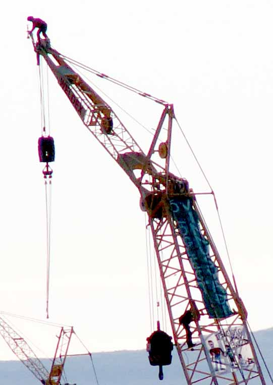 crane high contrastred